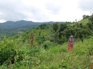 best-elephant-sanctuary-chiang-mai-woman-field