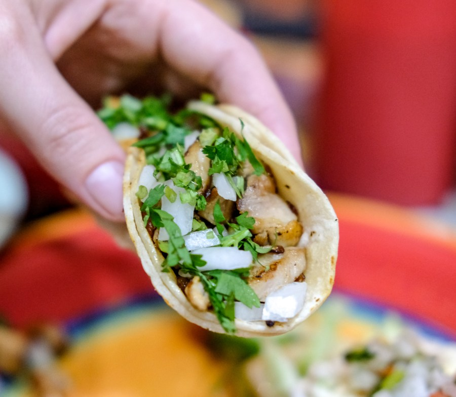 Close up of chicken taco.
