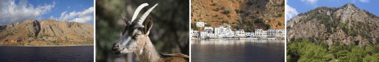 Vegan travel in the Samaria gorge and Loutro, Crete, Greece