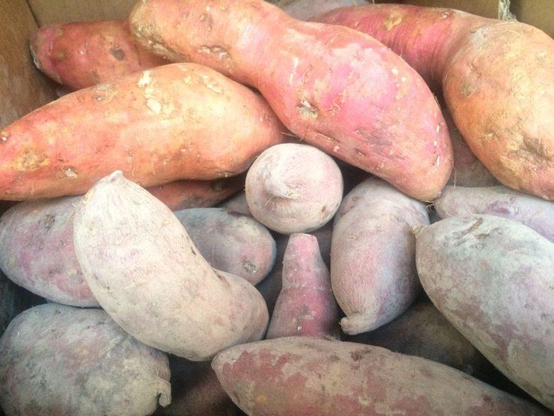 Sweet potatoes - vegan travel in the Congo (DRC)