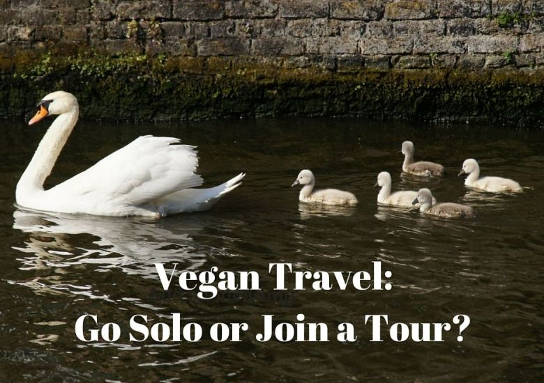 Vegan Travel - Solo or Group Tour