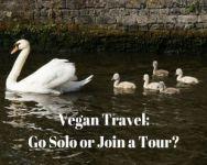 Vegan Travel - Solo or Group Tour nirvana