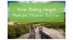 How Being Vegan Makes Travel Better - Vegan Benefits