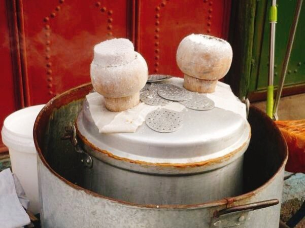 Mushroom-shaped cake moulds - Living The China Study