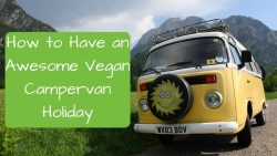 How to have an awesome vegan campervan holiday