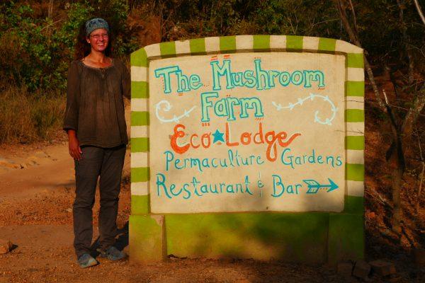 The Mushroom Farm - Malawi Food