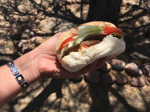 Veggie burger - tour of Namibia