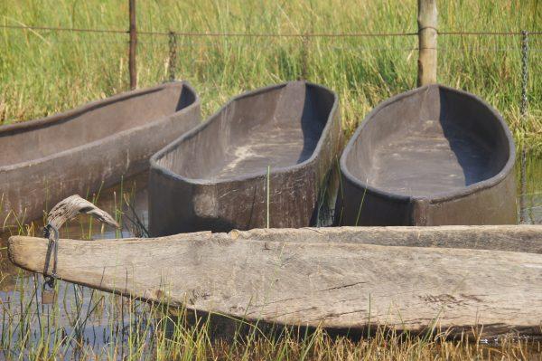 Mokoro canoes in Okavango Delta - vegan guide