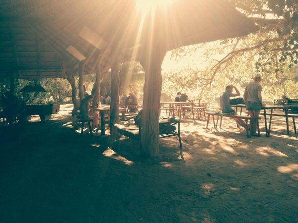 Old Bridge Backpackers - vegan guide on mokoro trips