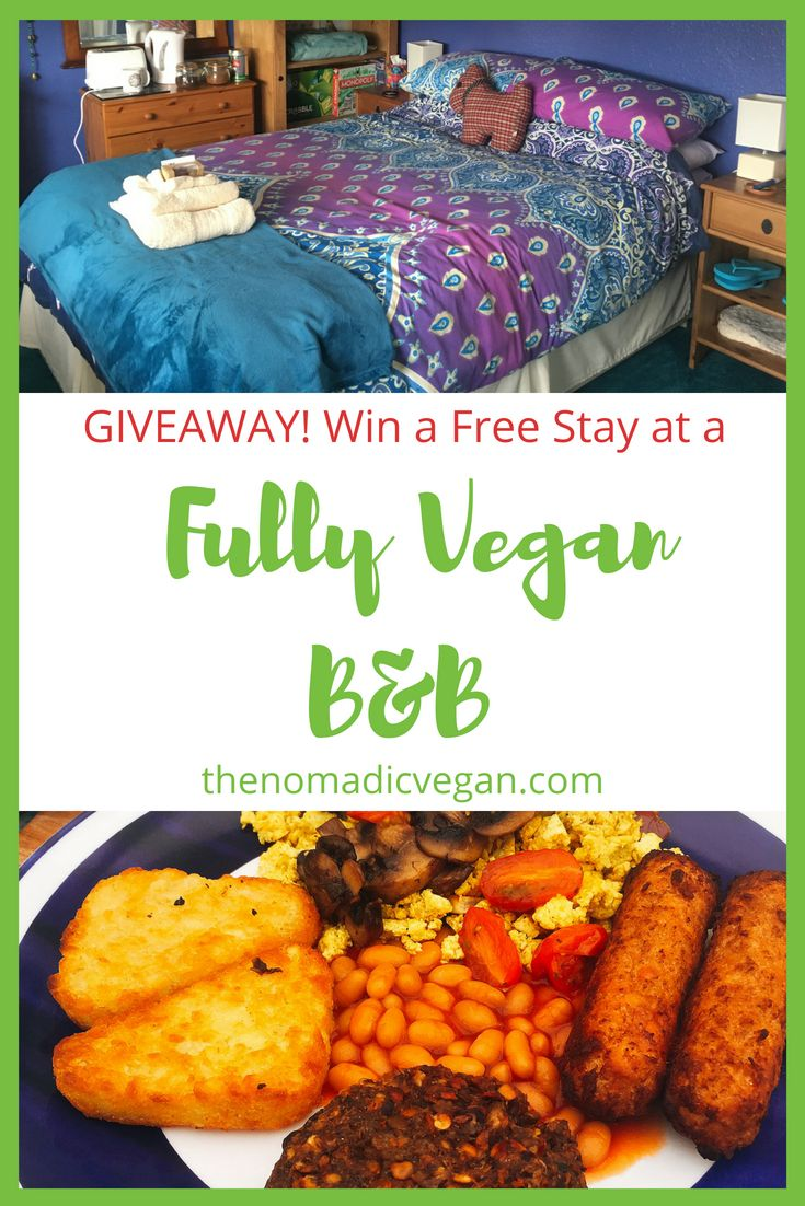 Giveaway - Win a Free Stay at the Cosy Vegan B&B in Scotland
