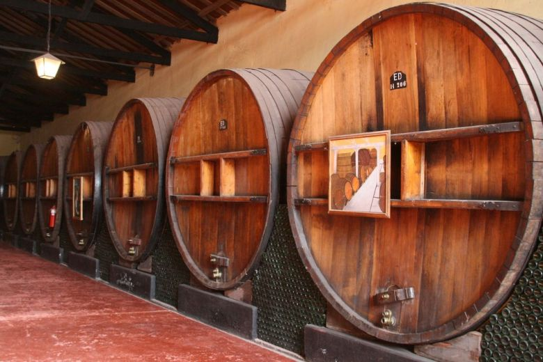 Oak wine barrels - organic vegan wine brands