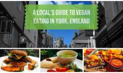 A Local's Guide to Vegan Restaurants York England