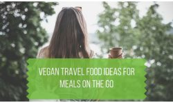 Vegan Travel Food Ideas for Meals on the Go