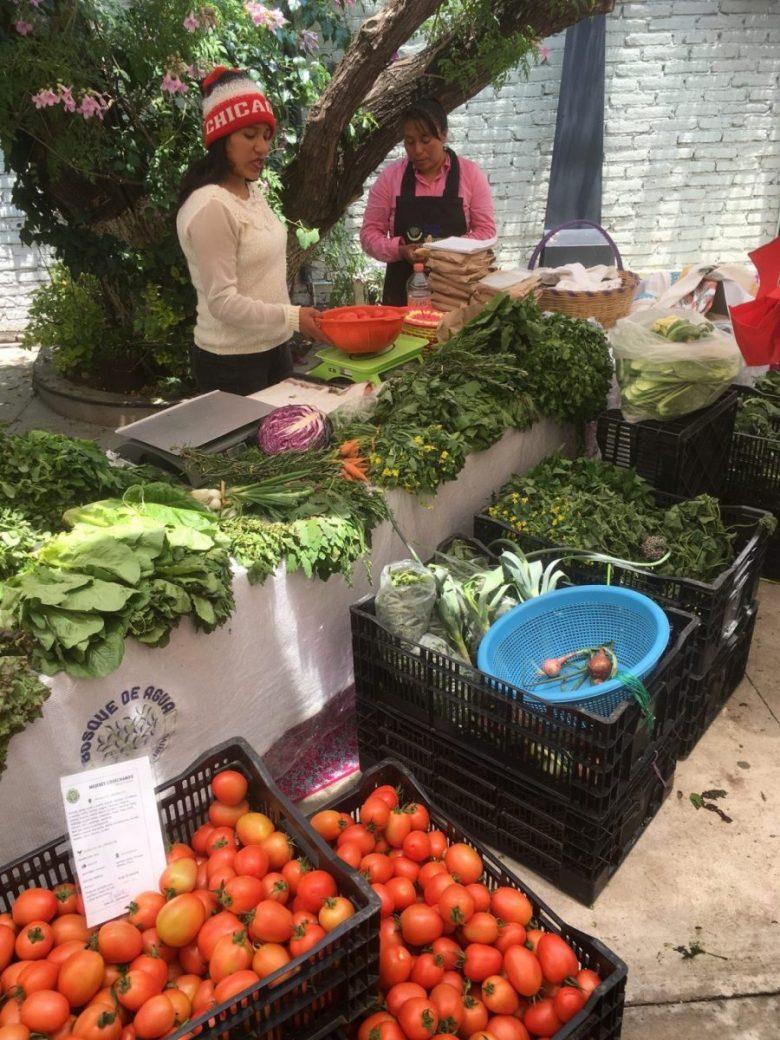 Farmer's Market - Mexican food vegan