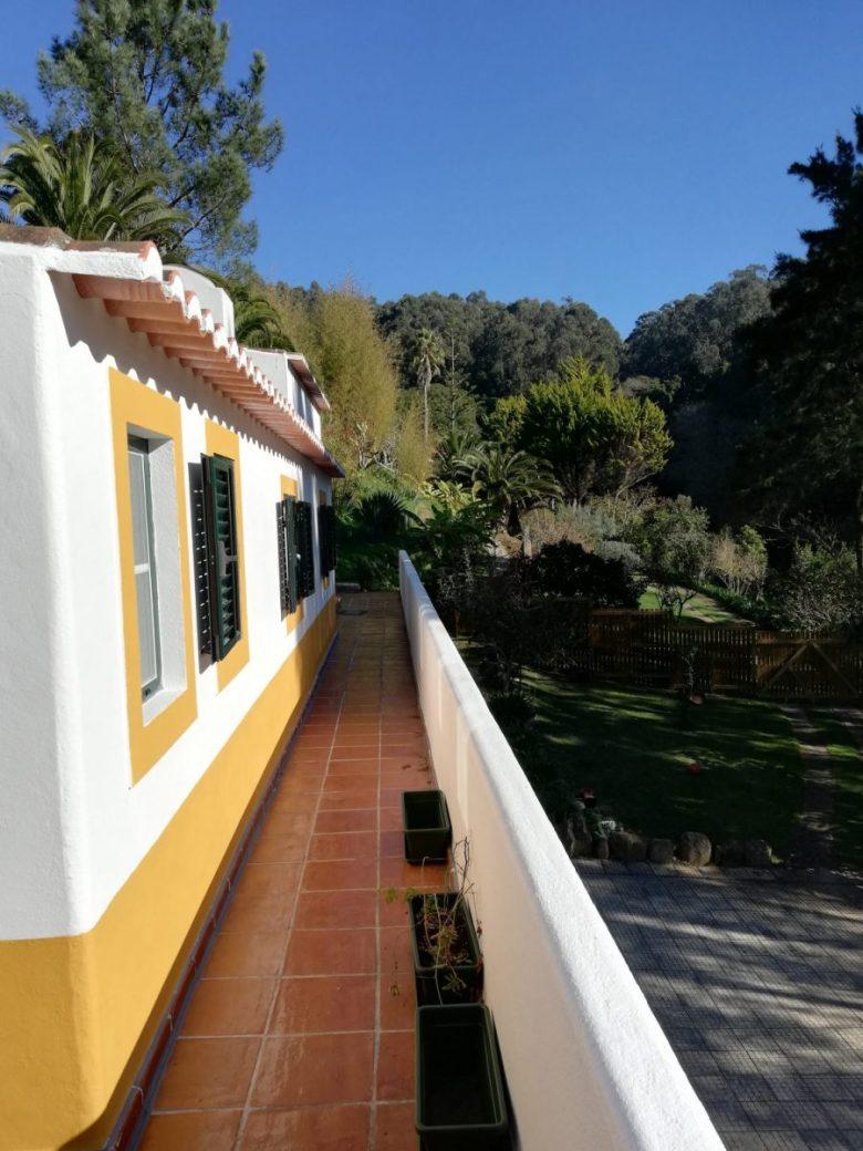 Sofia's organic vegetable farm is a must-do Lisbon experience