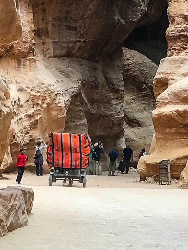 Wounded brown horse pulling tourists in a carriage at Petra, Jordan