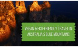 Vegan & Eco-Friendly Travel in Australia's Blue Mountains