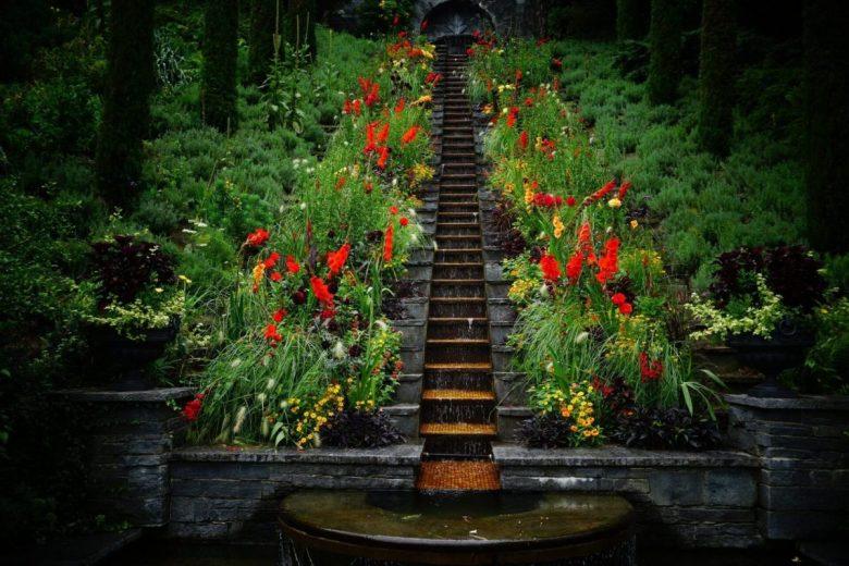 The beautiful flowers of Mainau Island Germany