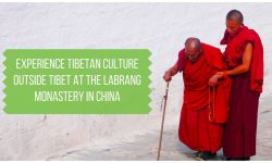 Tibetan Culture Outside Tibet at Labrang Monastery China
