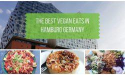 Vegan Hamburg Germany - Best Places to Eat
