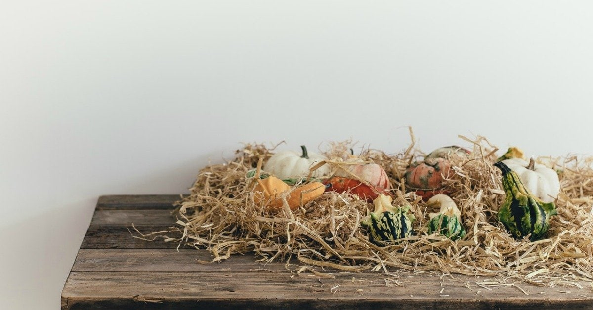 5 Fall Decorating Ideas That Will Give Your Home a Designer Look