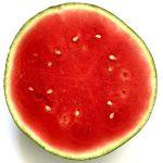 Cool & Refreshing Watermelon Mojito