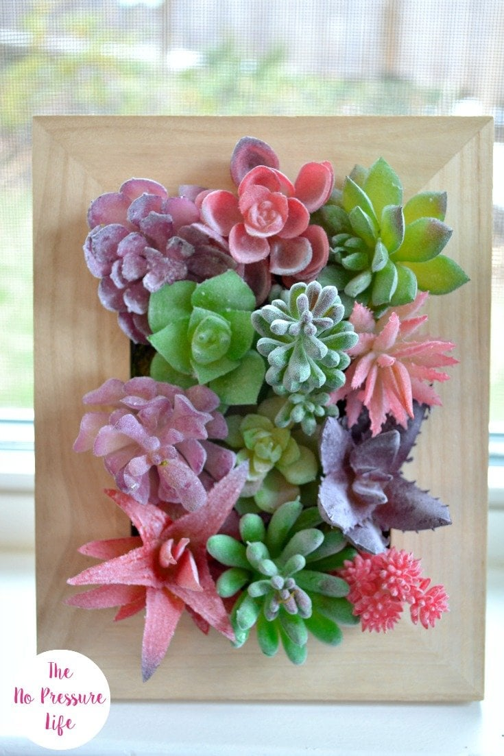faux succulents in a wood frame