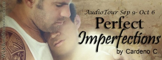 Audio Banner - Perfect Imperfections copy