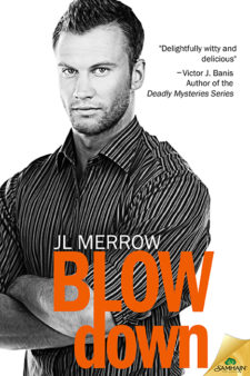 Copy of BlowDown72lg