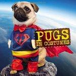 Pet Halloween Costumes - Pugs