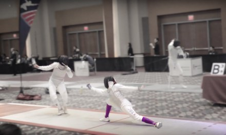 Fencing at an international level