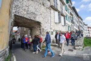 theo cheval 2019 – mairie de bayonne – visites guidees 37