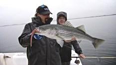 Cape Cod 054
