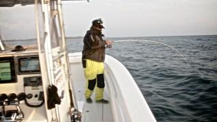 Cape Cod 055