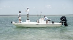 key west tarpon09