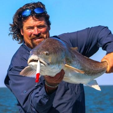 Carter's redfish