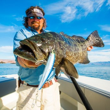 Carter with Leopard Grouper