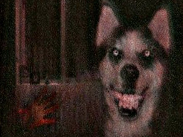 Nightmare Fuel: 9 Creepiest Internet Memes of All Time