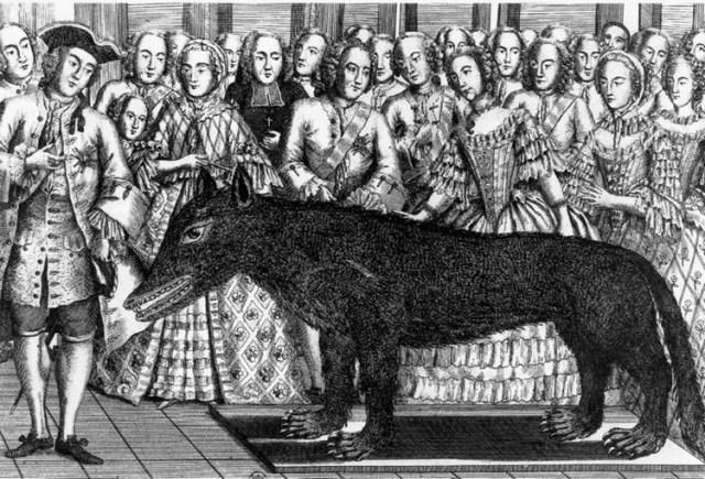 Beast of Gévaudan: The True Story Behind the Legendary Werewolf