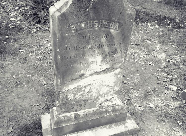 La conjuration: la véritable histoire de la famille Perron hantée
