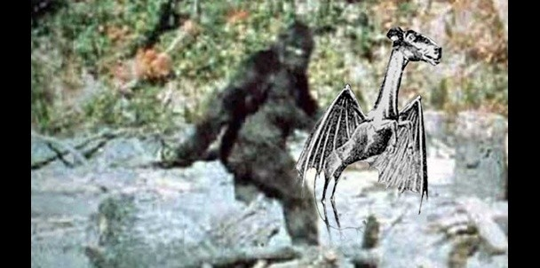 Is the Jersey Devil Really Just Bigfoot?