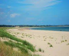 Beaches wexford