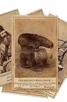 Miscellaneous Postcards