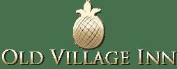 The Old Village Inn