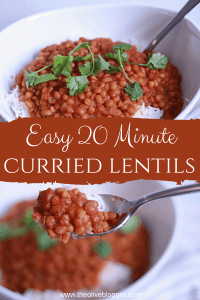 Curried Lentils long pin