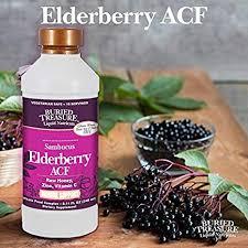 Buried Treasure Sambucus Elderberry ACF 8.11 Fl oz Liquid
