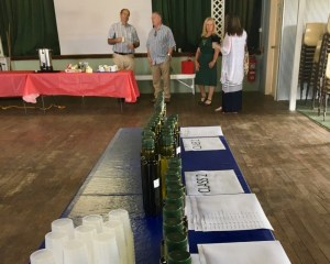 Getting ready for judging at the 2017 Hunter Olive Show