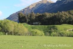 Near view: Hobbit set on South Island