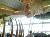 Wellington Airport Gollum in closeup