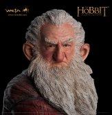 hobbit_balin_d_lrg